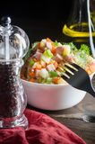 Russian traditional salad `Olivier` Stock Photography