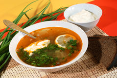 Russian traditional soup - solyanka. Solyanka - Russian traditional spicy soup of vegetables and meat with olives stock photography
