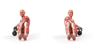 Russian twist. Anatomy of kettlebell exercise - russian twist Stock Image