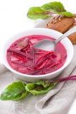 Russian-ukraine cuisine - borsch. Borstch stock photography