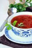 Russian ukrainian borscht soup Stock Images