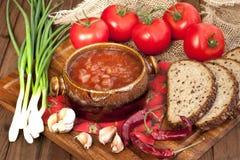 Russian-ukrainian  cuisine -  soup borscht Royalty Free Stock Photos
