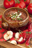 Russian-ukrainian  cuisine -  soup borscht Stock Photos
