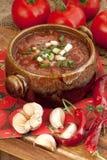 Russian-ukrainian  cuisine -  soup borscht Stock Photos