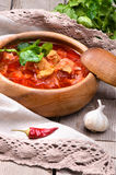 Russian and Ukrainian national red soup Stock Image