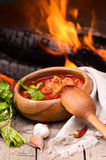 Russian and Ukrainian national red soup Royalty Free Stock Image