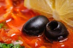 Russian and Ukrainian soup solyanka. AKA saltwort or barilla Royalty Free Stock Photography