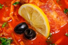 Russian and Ukrainian soup solyanka. AKA saltwort or barilla Stock Photography