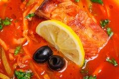 Russian and Ukrainian soup solyanka. AKA saltwort or barilla Stock Image