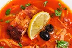 Russian and Ukrainian soup solyanka. AKA saltwort or barilla Stock Images