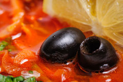 Russian and Ukrainian soup solyanka. AKA saltwort or barilla, macro shot Royalty Free Stock Photos