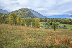 Russian village in the Altai Mountains Royalty Free Stock Photo