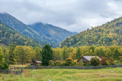 Russian village in the Altai Mountains Stock Photo