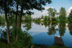 Russian village Bogorodskoye pond, birch and geese. 2016 stock images