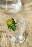 Russian vodka. With pickles parsley and bottle stock images