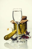Russian vodka with pickles Stock Images