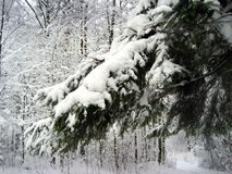 Russian Winter Royalty Free Stock Image