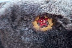 Russian winter fur hat close up Stock Image