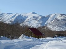 Winter in Kamchatka. Snow and frost. View of hills and trees stock image
