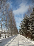 Russian Winter landscape with snow. Russian Winter road with snow and trees spruce and Birch royalty free stock image