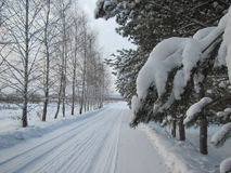 Russian Winter landscape with snow. Russian Winter road with snow and trees spruce and Birch stock images
