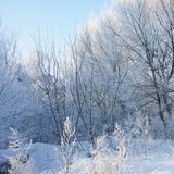 Russian Winter Royalty Free Stock Photography