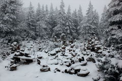 Russian winter. Photo of russian winter. Russia Yekaterinburg Royalty Free Stock Photography