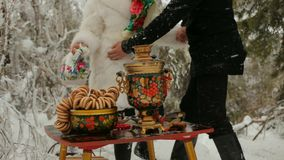 Russian Winter Picnic stock footage