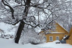 Russian winter. Traditional wooden house. Royalty Free Stock Photography