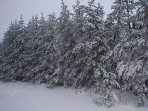 Russian Winter. Stock Photo