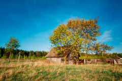 Russian Wooden Village House In Russia In Summer, Spring Sunny D Stock Image