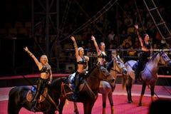 Russisch circusmeisje stock foto's