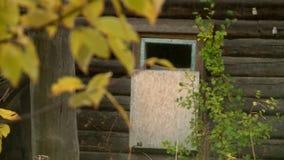 Russisch dorp in de herfst stock footage