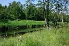Russisch landelijk landschap royalty-vrije stock afbeelding