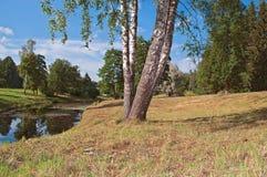 Russisch landschap Royalty-vrije Stock Afbeeldingen