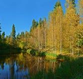 Russische Aard - de Zachte herfst op het meer dichtbij shakhmatovo-Stad royalty-vrije stock afbeelding