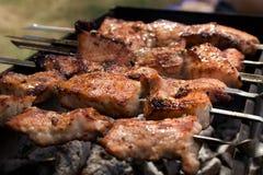 Russische barbecue Stock Afbeeldingen