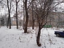 Russische de winterbomen stock fotografie