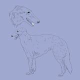 Russische gezeichnete Skizze des Jagdhundes Hand Stockbild