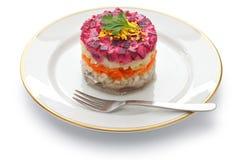 Russische haringensalade stock foto