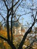 Russische kerk in Moskou, Rusland stock afbeeldingen