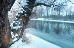 Russische Konserve Mysteriöse Winterlandschaft Bäume auf der Bank von einem gefrorenen Fluss Stockfotos