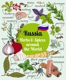 Russische Kräuter und Gewürze Stockbild