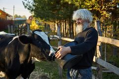 Russische landbouwer stock afbeelding