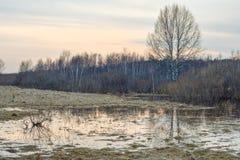Russische Landschaft Lizenzfreie Stockfotos