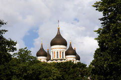 Russische Orthodoxe Kathedraal Alexander Nevsky Stock Afbeelding