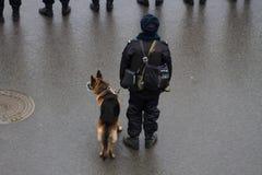 Russische Polizei und Hunde auf oppositionellem Marsch Stockfotografie