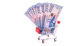Russische roebels in het boodschappenwagentje stock fotografie