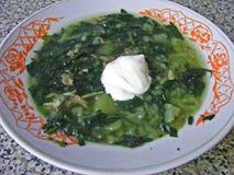 Russische rustieke keuken: netel groene soep in een rustieke kom, soep van kruidenvitaminen voor gezondheid royalty-vrije stock afbeeldingen
