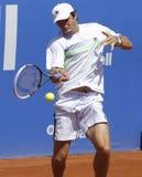 Russische tennisspeler Teymuraz Gabashvili Stock Fotografie